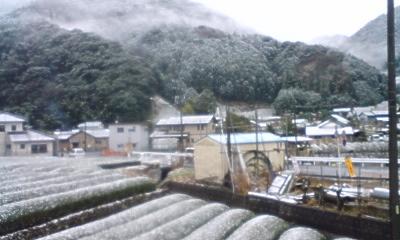 080121_seji_a-02.jpg